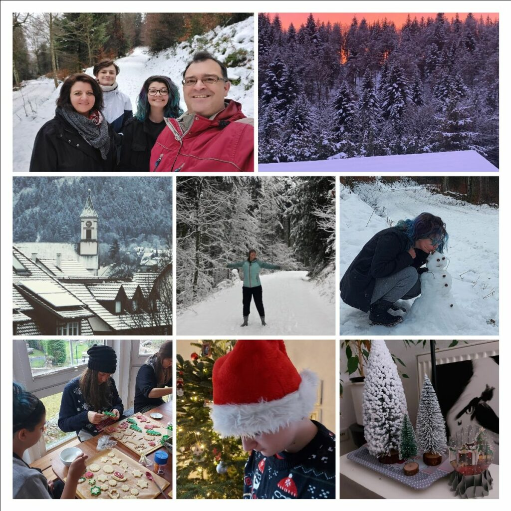 2020 Christmas Collage.
